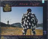 Pink Floyd - Delicate Sound Of Thunder CD Cover Art