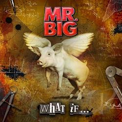 Mr. Big - What If... CD Cover Art