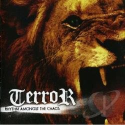 Terror - Rhythm Amongst Chaos CD Cover Art