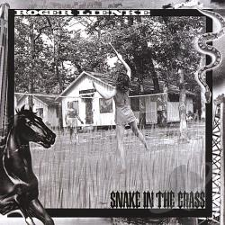 Lienke, Roger - Snake In The Grass CD Cover Art
