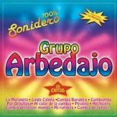 Grupo Arbedajo - 100% Sonidero - 20 Exitos CD Cover Art