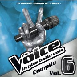 Voice: La Plus Belle Voix - L'Album de la Finale! CD Cover Art