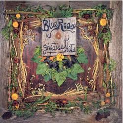 Blue Rodeo - Greatest Hits, Vol. 1 CD Cover Art
