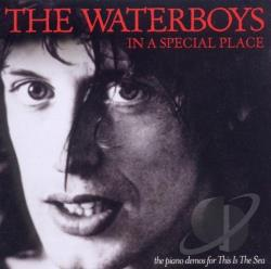 Waterboys - In a Special Place CD Cover Art