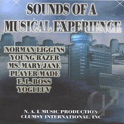Playermade / Yogiluv / Youngrazer - Sounds Of A Musical Experience CD Cover Art