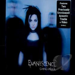 Evanescence - Going Under DS Cover Art