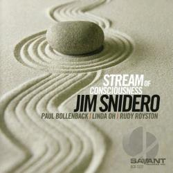 Snidero, Jim - Stream of Consciousness CD Cover Art