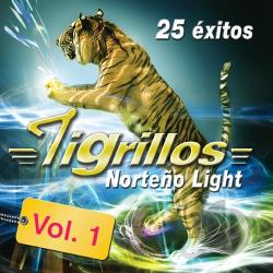 Los Tigrillos - 25 Exitos Norteno Light con Tigrillos, Vol. 1 CD Cover Art