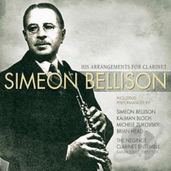 S. Bellison Net Worth