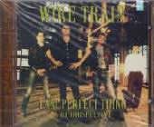 Wire Train - Last Perfect Thing: A Retrospective CD Cover Art