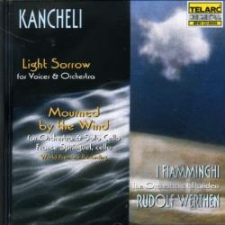 I Fiamminghi / Kancheli / Springuel / Werthen - Kancheli: Mourned By The Wind/Light Sorrow CD Cover Art