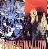 Radical Stuff - Hardswallow CD Cover Art