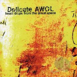 Delicate Awol - Heart Drops From The Great Space CD Cover Art