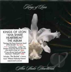 Kings Of Leon - Aha Shake Heartbreak CD Cover Art