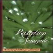 Various Artists - NEW AGE - Raindrop Serenade CD Cover Art