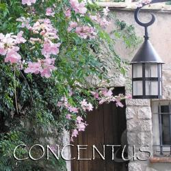 Concentus Women's Chorus - Concentus CD Cover Art